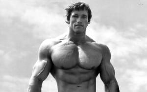 muscle mass arnold