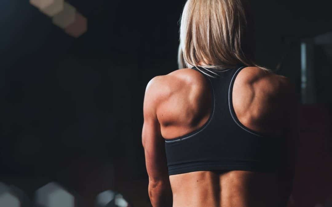 The Three Fundamentals of Building Muscle, Part 3: Frequency