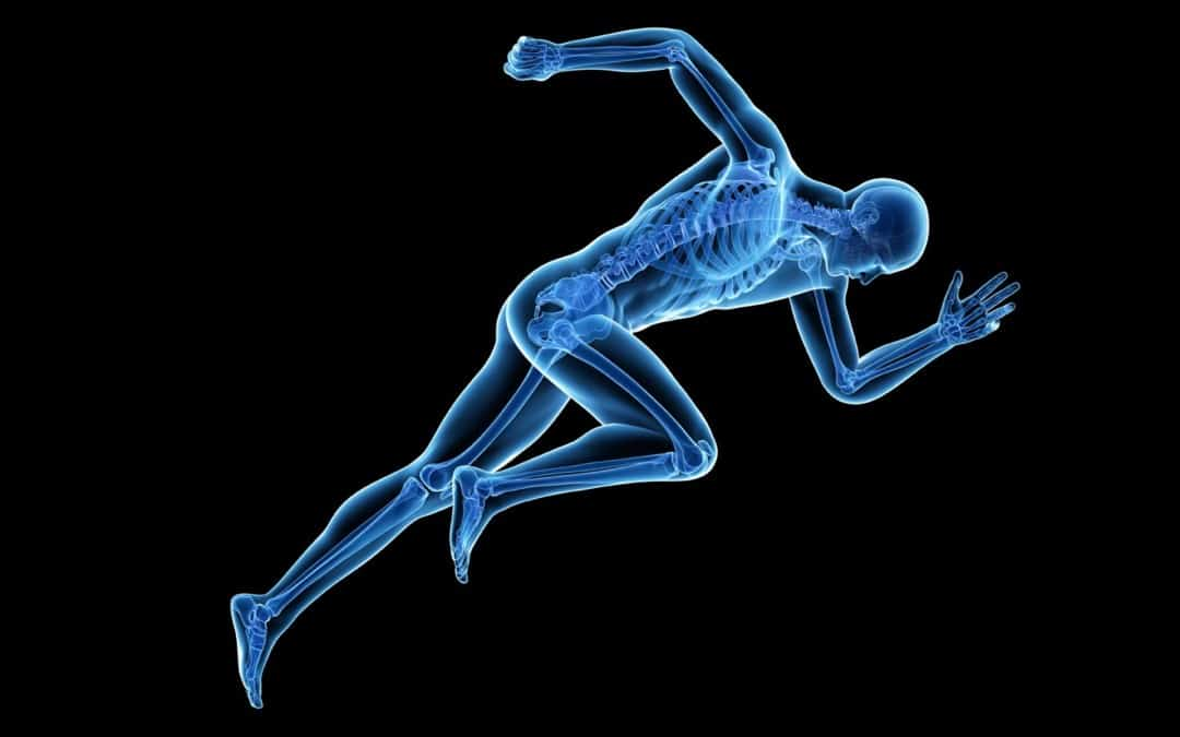 Your Bones are Part of Your Metabolism